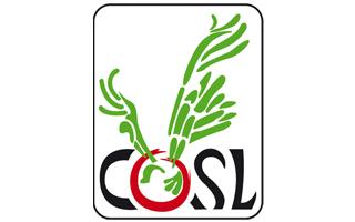 mirena-employeur-COSL